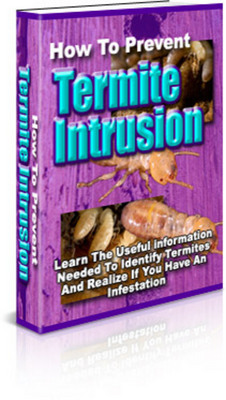 Product picture How To Prevent Termite Intrusion With Master Resale Rights